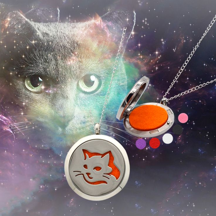 Find More Pendants Information about CAT AROMATHERAPHY ESSENTIAL OIL DIFFUSER NECKLACE  STAINLESS STEEL PERFUME LOCKET PENDANT,High Quality perfume agent,China perfume direct Suppliers, Cheap perfume vial pendant from DreamFire Store on Aliexpress.com