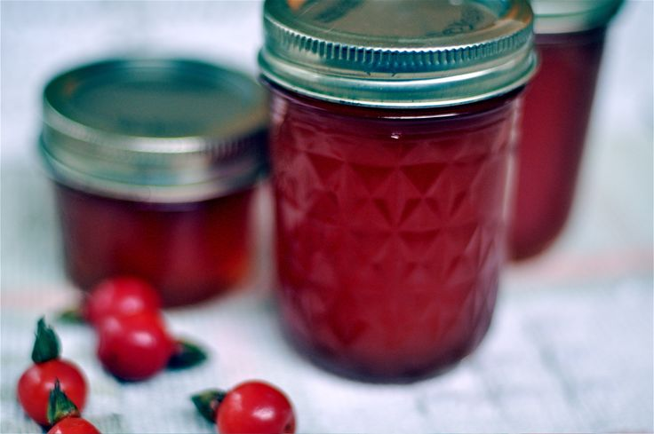 Rose Hip Jelly Recipe