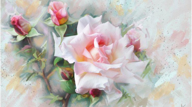 Скачать обои цветок, цветы, розовая, графика, Роза, живопись, нежно, пастельные тона, обои от lolita777, раздел живопись в разрешении 1366x768