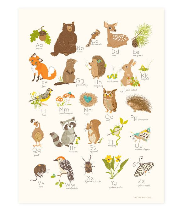 Add a dazzling dash of flair to your little ones bedroom with this eye-catching (and educational) print. Its a lovely way to spread instant