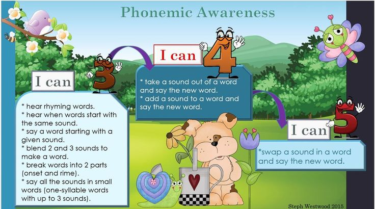 A set of charts where students can monitor their understanding of the Phonemic Awareness Aspect of the literacy continuum.