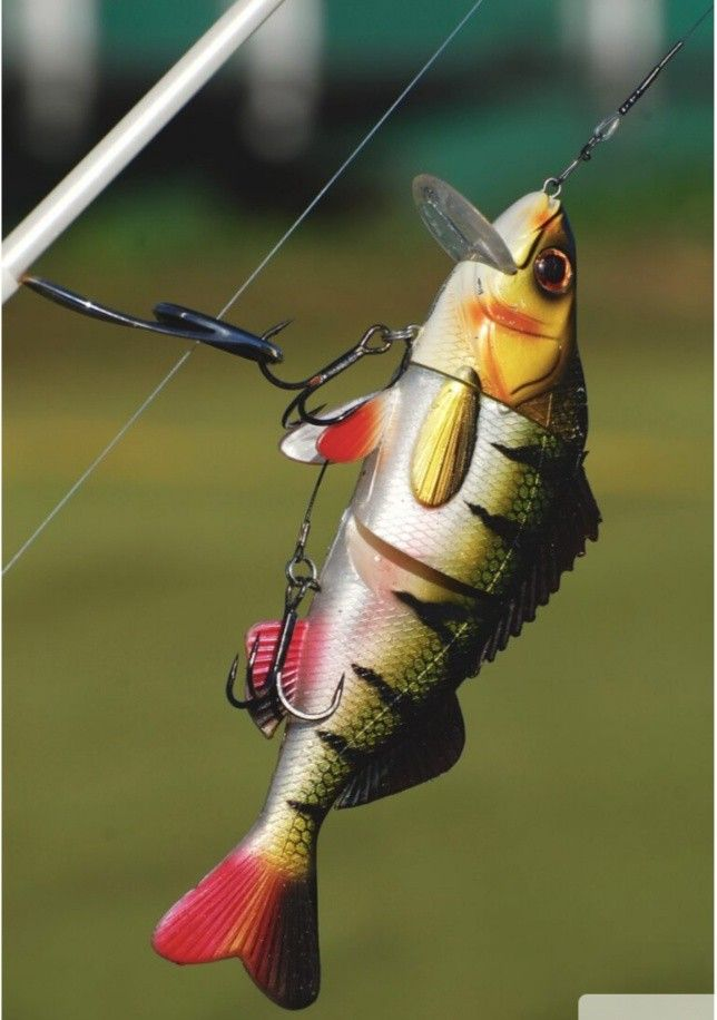 Pin By 42 On 777 In 2021 Fishing Lures Fish Bass Fishing