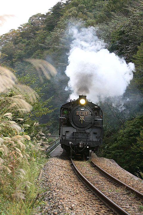 SLあぶくま号の写真 C11325蒸気機関車