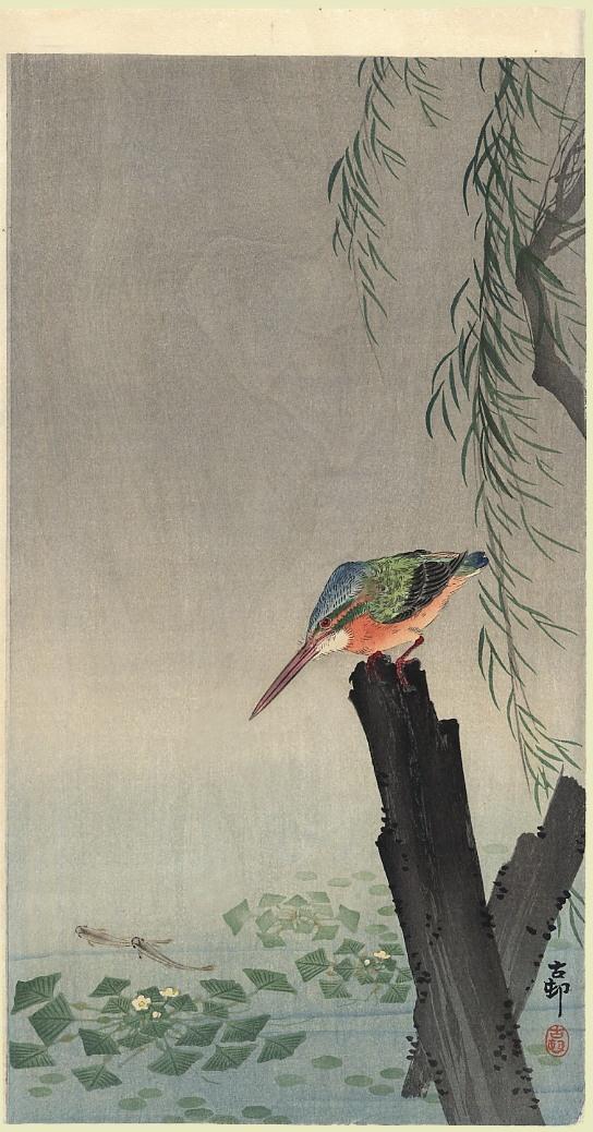 Ohara Koson / Kingfisher