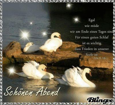 Einen schönen Abend wünsche ich Dir und später eine gute Nacht