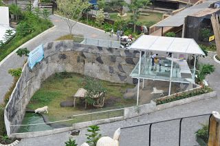 Secret Zoo - JATIM PARK 2 KOTA BATU ~ WISATA KOTA BATU-MALANG