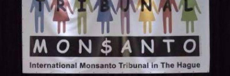 Een Internationaal volkstribunaal dat op 14-16 oktober werd opgericht in Den Haag om de chemie- en zaden reus Monsanto ter verantwoording te roepen, heeft de voorbije week uitspraak gedaan.