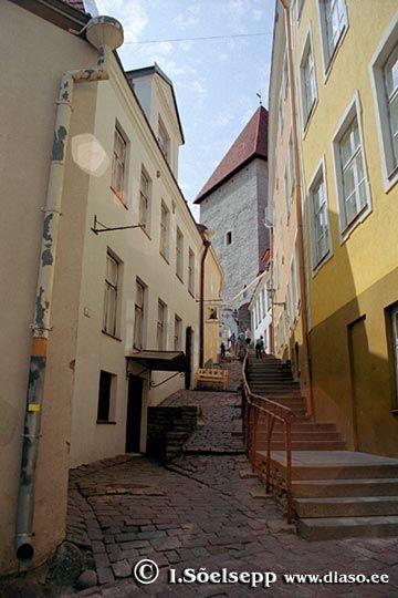 Lühike Jalg Tallinn Estonia