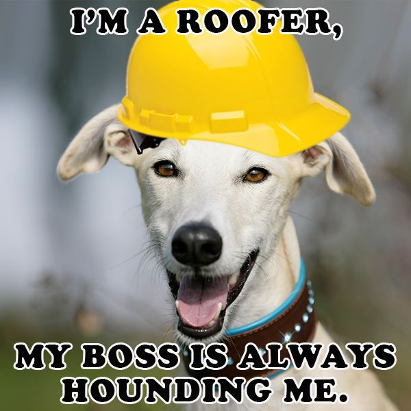 27 Best Roofing Quotes Amp Funnies Images On Pinterest