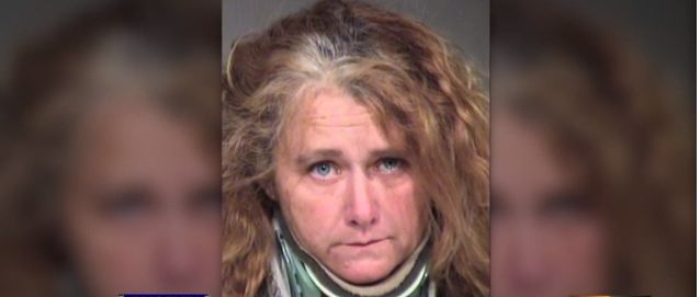 12/29/17 A Phoenix, Arizona, animal rescuer has been arrested on a charge of animal cruelty. According to AZ Family,Rebekah Fox, owner ofMavyn Dog Rescue, was arrested on Thursday following the intake of a sickly dog who was taken to the Arizona Humane Society for life saving care. A video, posted to Facebook, shows the pitiful condition …