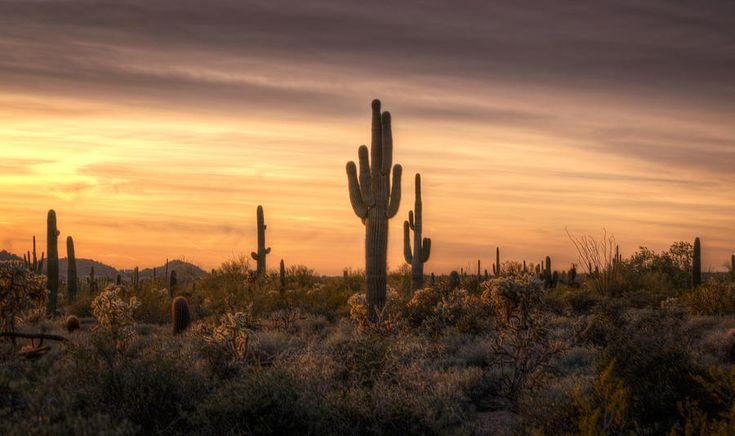 desert southwest pictures | Desert Southwest Sunset Photograph