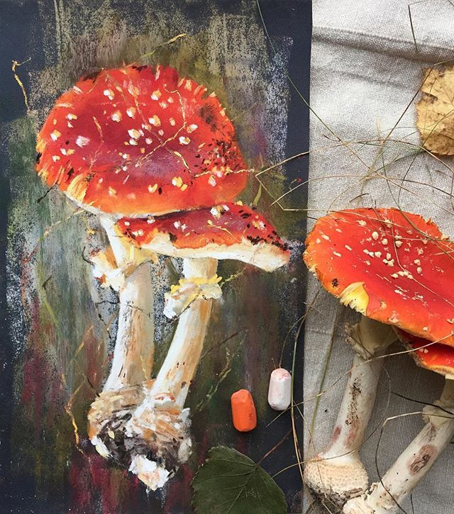 Пара #пастель #наждачка  #рисуюпастелью #скетч #мухомор #осень #topcreator #softpastels #softpastel #pastel #sandpaper #mushrooms #amanita
