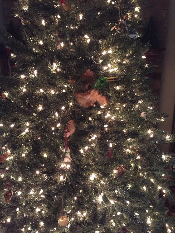 Is It Real? A Hilarious Compilation Of The Constant Battle Between Cats & Christmas Trees • Page 2 of 5 • BoredBug