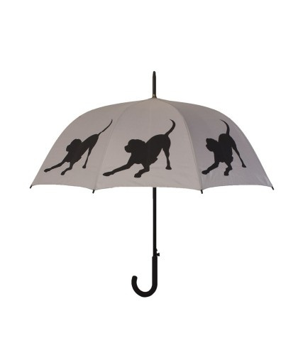 I need this umbrella