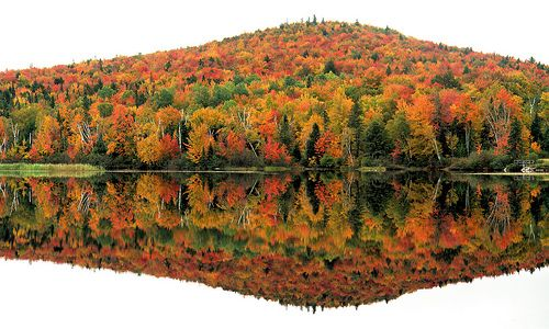 Reflections on the Pontook reservoir, White Mountains National Forest, Dummer, New Hampshire -