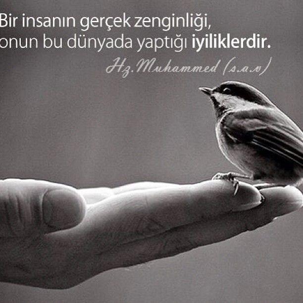 .@turkogluhido | Webstagram - the best Instagram viewer