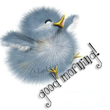 Good Morning Comments, Images, Graphics for Orkut, Myspace, Hi5