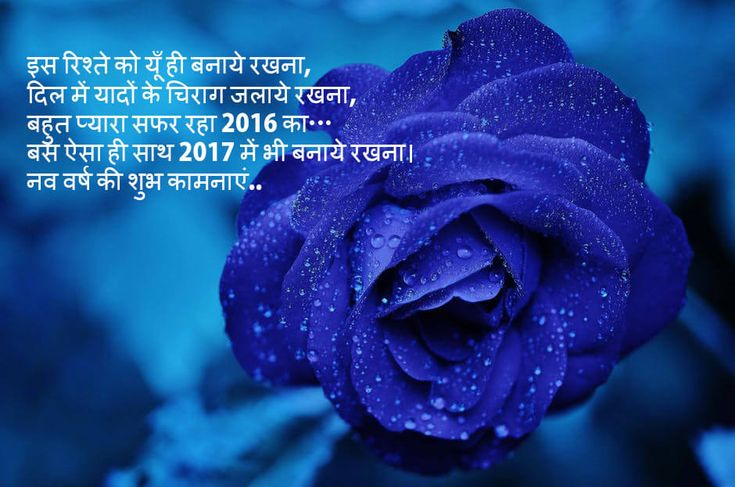 You can find new year shayari in hind and urdu. Here we have new year images, quotes, wishes, SMS and Shayari in Hindi/Urdu. Download Shayari and Urdu Sheri