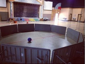 Indoor Ga-Ga Ball Pit - this is my kids favorite game for sure ... hard to get them to play anything else.  Check out the rules here http://www.gagaballpits.com/rules.html