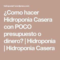 ¿Como hacer Hidroponia Casera con POCO presupuesto o dinero?   Hidroponia   Hidroponia Casera