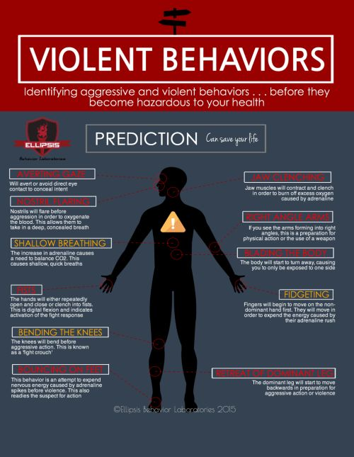 Violent behaviour reference sheet