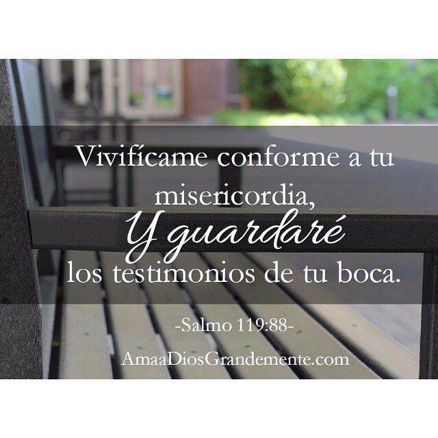 Salmo 119:88 Vivifícame conforme a tu misericordia, Y guardaré los testimonios de tu boca.♔