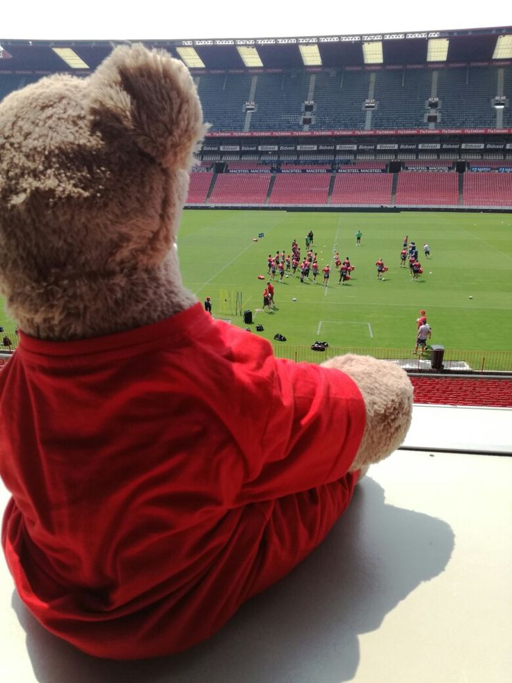 After a successful weekend against the reds, I love watching the Emirates Lions prepare for the next game!  #LeyaTheLion #Liontaiment #Lions4Life #SuperRugby #EmiratesLions #BeThere #MyLionsMoment #LionsPride #KINvLIO