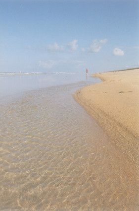 The Canaveral National Seashore, which includes beaches from south of New Smyrna Beach to Titusville, is one of the last of the Florida wildernesses.