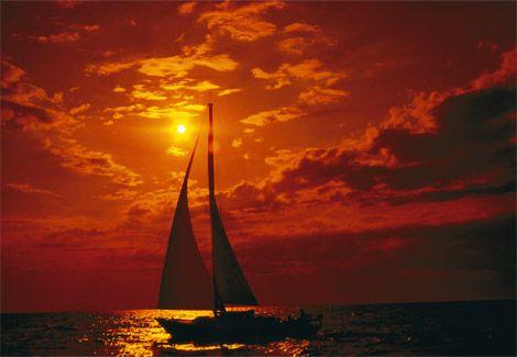 orange: Orange Sunsets, Orange Sailboats, Color, Amber, Lakes Michigan, Father Daughter, Orange Sky, Photo, Sailing Boats