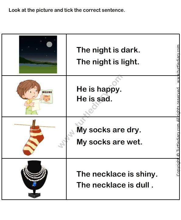 Describing Words Worksheet20