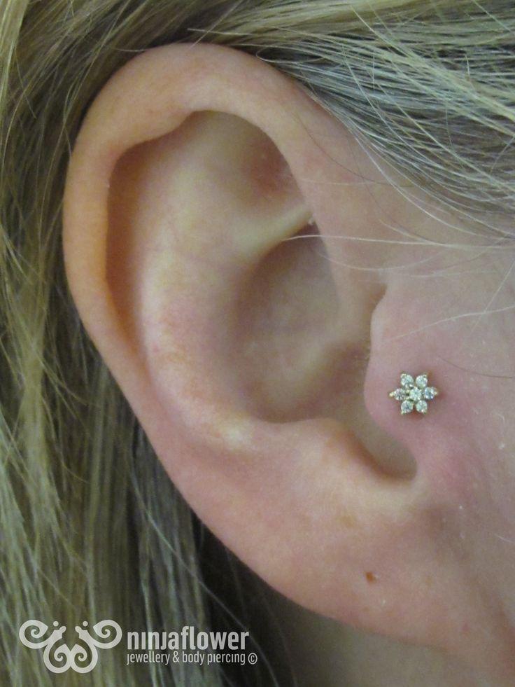 Tragus piercing with cz flower | Tragus | Pinterest ...