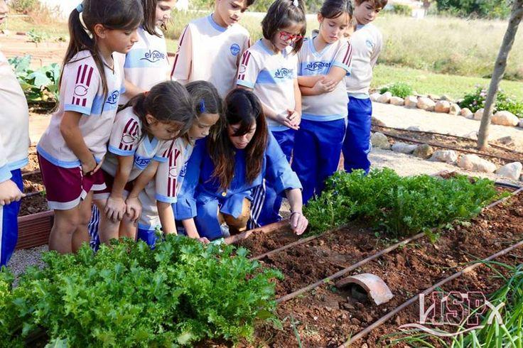 Los #alumnosISP vigilan de cerca la cosecha... ¡Qué rico todo! ;) www.colegiosisp.com