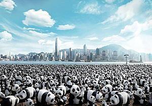 1600熊猫
