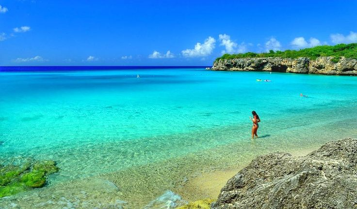 Kenepa Beach se considera una de las playas más del Caribe. Se encuentra en #Curaçao lejos de la capital Willemstad por lo que necesita para llegar a alquilar un coche o una moto o un servicio de transporte que normalmente se ofrece en hoteles. Aguas cristalinas una playa de esas que normalmente ves solo en películas es un #Imperdible de Curazao.  Si necesitas: boletostours alojamiento en #Curaçao Contactanos: turistukeando@gmail.com Info@turistukeando.com  Whatsapp: 58 412 7050963 58 414…