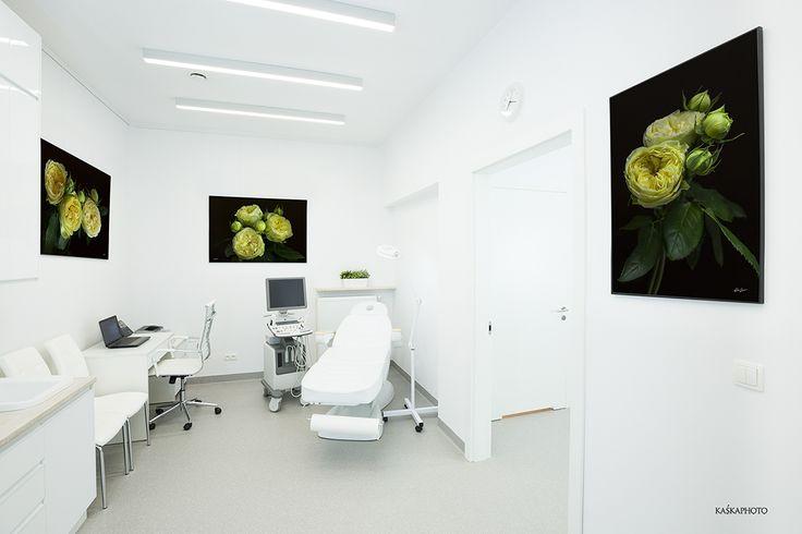 SaskaMed Klinika Zdrowia i Urody Dr Rafała Kuźlika, Saska Kępa, Warszawa  photo by Kaśka Sikora #SaskaMed #LekarzeSpecjaliści #KlinikawWarszawie #GinekologwWarszawie #KatarzynaSikora #zdjęciaróż #żółte róże #wystrójwnętrz #wnętrza #wystroje #projektanciwnętrz #SikoraFotograf #KaśkaSikora