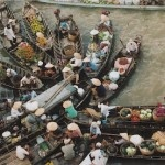 Mekong Delta Optional Tours (1 day)
