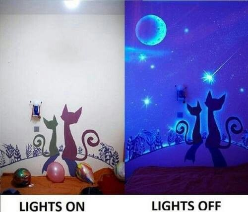 Glow in the dark kitten room