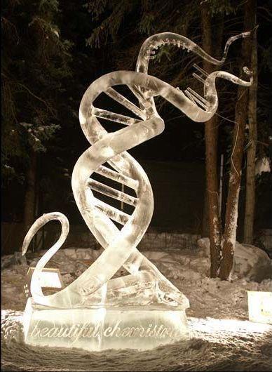 DNA ice sculpture: Dna Ice, Dna Art, Double Helix, Science Stuff, Art Ice, Ice Sculptures