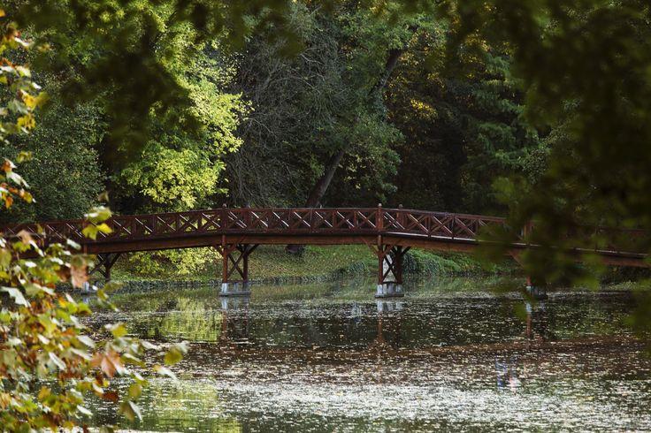 Autumn Bridge no. 2 by Laszlo Som on 500px