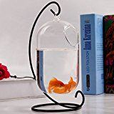 Watering Honey Hanging Glass Vase Creative Small Fish Tank Aquarium Fish Bowl With Stand For Office Desktop Decoration