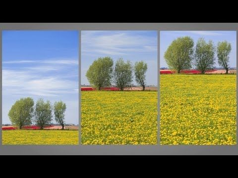Rule of Thirds : You Keep Shooting with Bryan Peterson: Adorama Photogra...