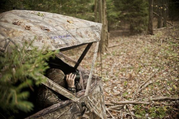 40 best deer hunting blinds and tree stands images on for Best deer blinds