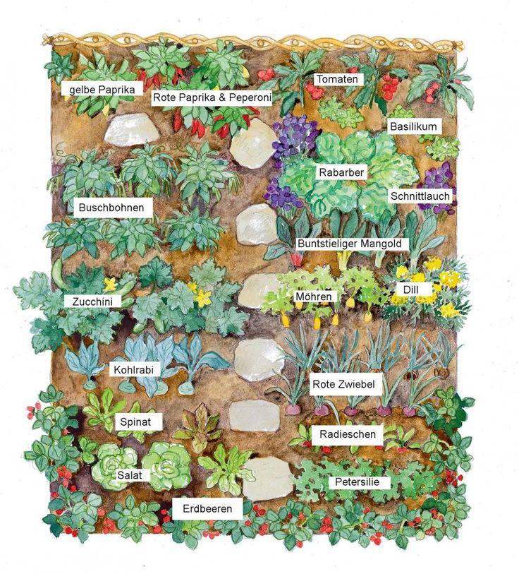 17 best ideas about pflanzplan on pinterest | blumengarten, Hause und Garten