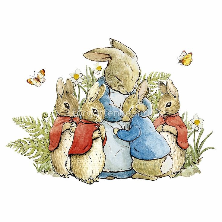 беатрис поттер картинки зайцев свадебные платья