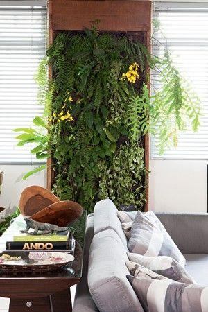 A falta de varanda era um problema no apartamento do paisagista Gil Fialho. Mas a questão foi contornada com uma solução esperta: o nicho entre as duas janelas da sala se transformou em um jardim vertical recheado de samambaias, bromélias e orquídeas.