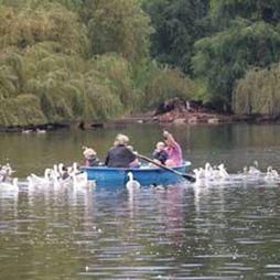 Boating on Zoo Lake!!