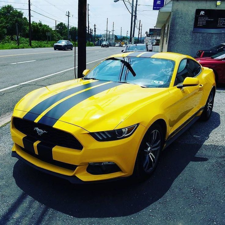 Beautiful 2016 #ford #mustangMatte Black Racing & Side Stripes Installed #MakeitStick #PaintIsDead  Via @royalcustomsllc credit goes to the photographer