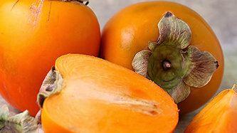 """Caqui: Conheça todos os segredos da """"Fruta Divina"""""""