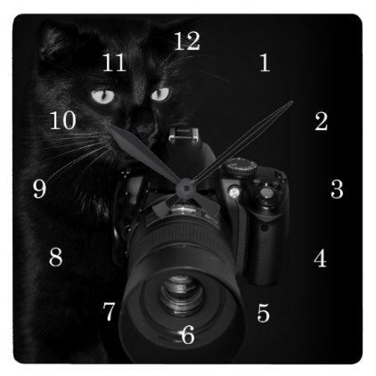 Cat with the camera square wall clock - animal gift ideas animals and pets diy customize