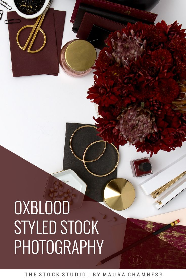 Sneak Peek: Oxblood Styled Stock Collection — MAURA CHAMNESS